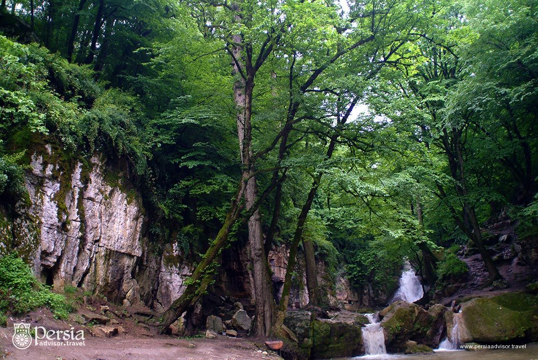 Hyrcanian Forests - Gorgan, Golestan Province, Iran - Persia Advisor Travels